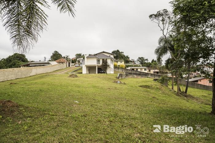 Chácara à Venda - Campo Largo